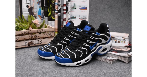 best website 10bc1 4ade8 Nike Air Max TN men s shoes black blue