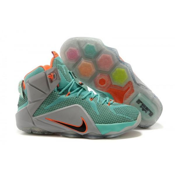 23db35e0caafd Nike LeBron James XII Editions